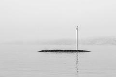 Navigation pole
