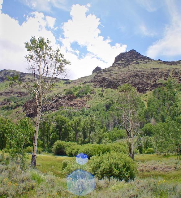 Big Indian Trail, Steens Mountain Oregon
