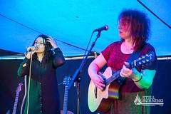 The Purple Tones - Willowman Festival 2015
