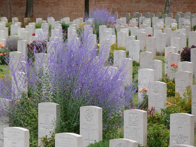 Cementerio de la Commonwealth en Arras (Norte de Francia)