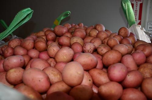 Several varieties of organic potatoes