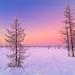 Winter, Siberia by czdistagon.com