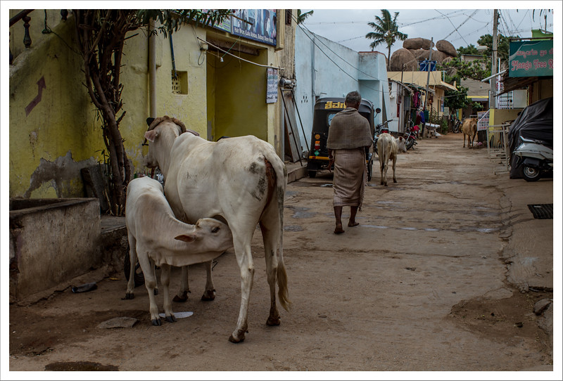 India-84