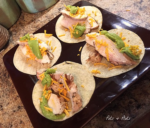 Tequila Lime Chicken Tacos ⋆ Kait Nolan