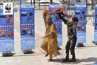 Embárcate con WWF Solar