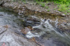 Roaring Fork (GSMNP) -39 by Mosaic Pictures