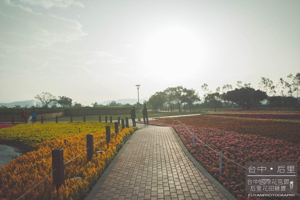 台中國際花毯節30
