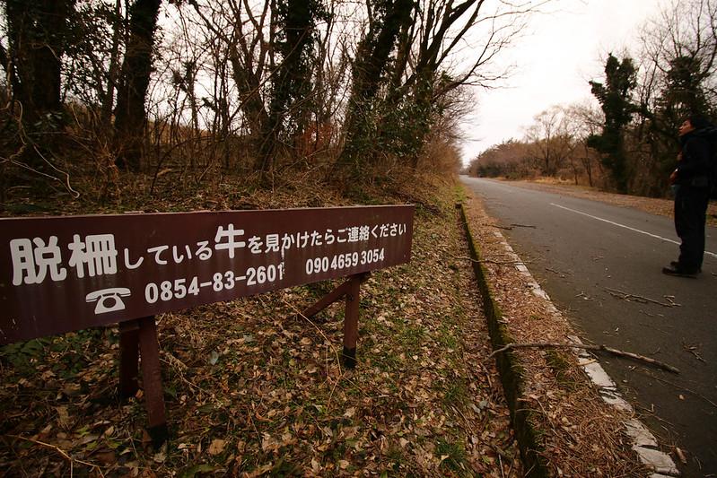 20150307-三瓶山-0413.jpg