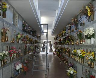 Il cimitero di Casamassima- Niente Fiori