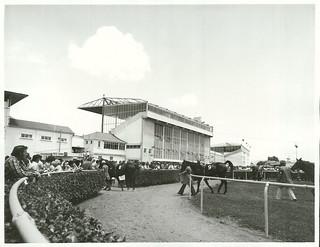 Avondale Race Course, Auckland