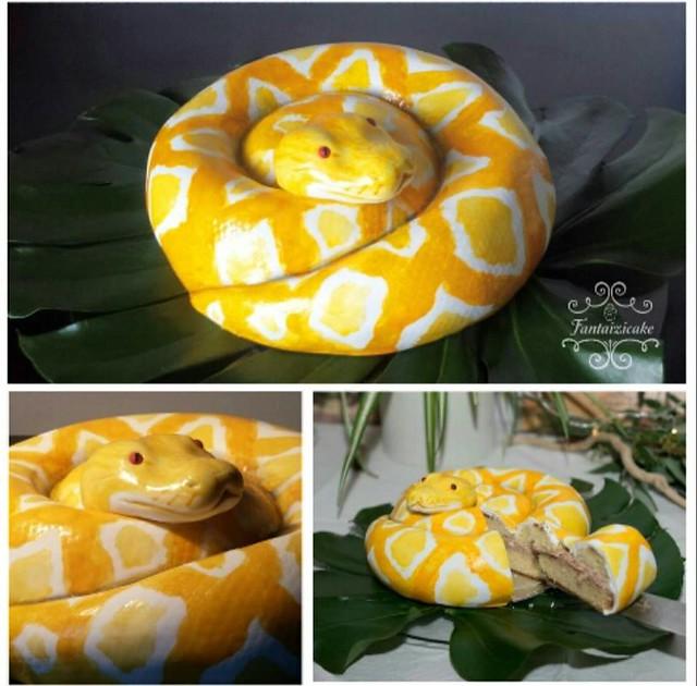 Snake Cake by Sarah Valette of Fantaizicake