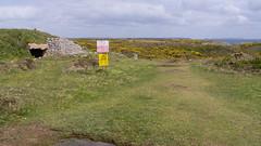 Castlemartin Range, Pembrokeshire