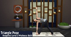Yoga 7 Triangle Pose