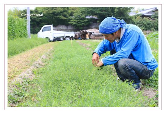 鬱蒼カフェ(うっそうカフェ) 愛知県瀬戸市 有機農家直営 鬱蒼農園畑 料理写真 出張撮影 全データ 女性カメラマン