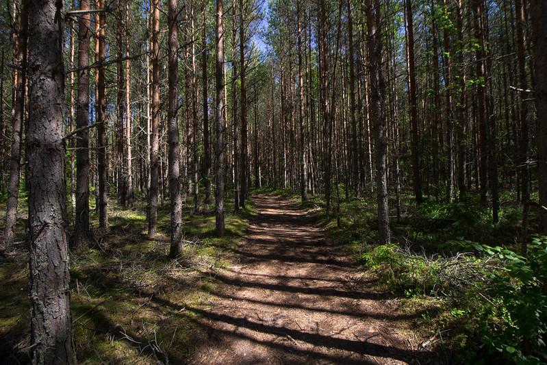 Pori, Suomi