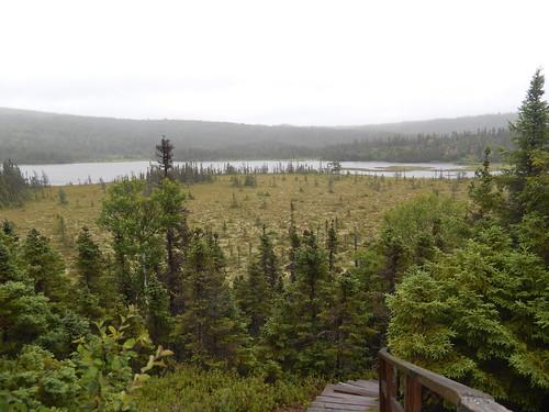Terra Nova National Park - 3