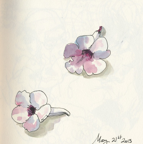 Sketchbook #90