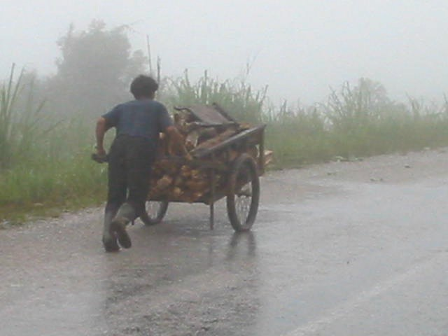 thailandeinde1 266 (1)
