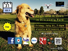 July 31 Dogs and Drones