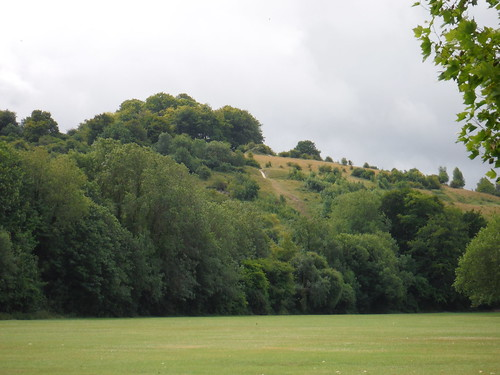 St, Catherine's Hill from riverside meadow