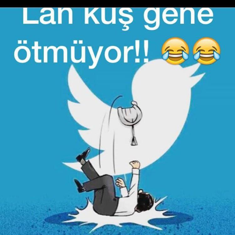 Twitter #like4like #follow #likefoto #likeback #likeme #l