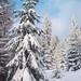 Blue Sky and snow by ★ Angeles Antolin ★