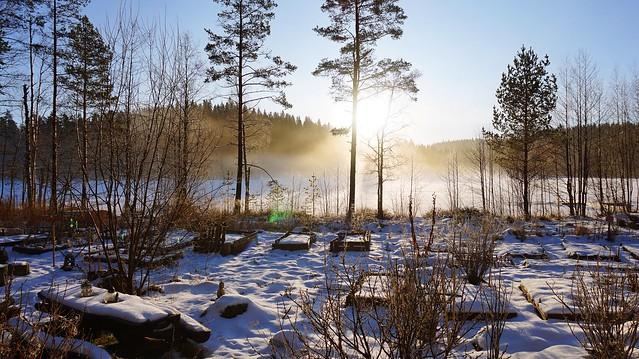Lake - Finnish Countryside