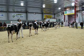 May 30 2015 - 9:08am - Expo Temiscamingue 2015