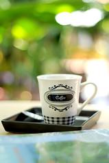 coffee in gradent