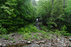 Roaring Fork (GSMNP) -36 by Mosaic Pictures