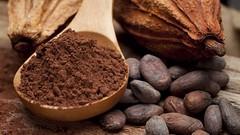 cacao, semi di cacao, dolci al cacao