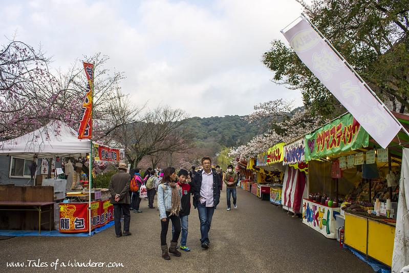 京都 KYŌTO - 円山公園 Maruyama-kōen