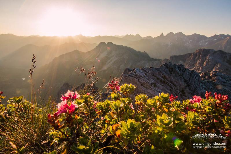 Sonnenaufgang auf der Oberstdorfer Hammerspitze