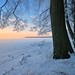 """snowy morning"" by Karel Hrouzek P H O T O"