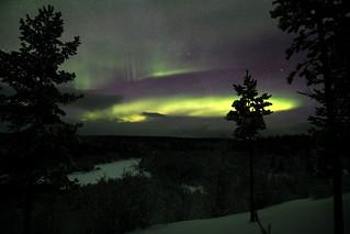 Aurora #3