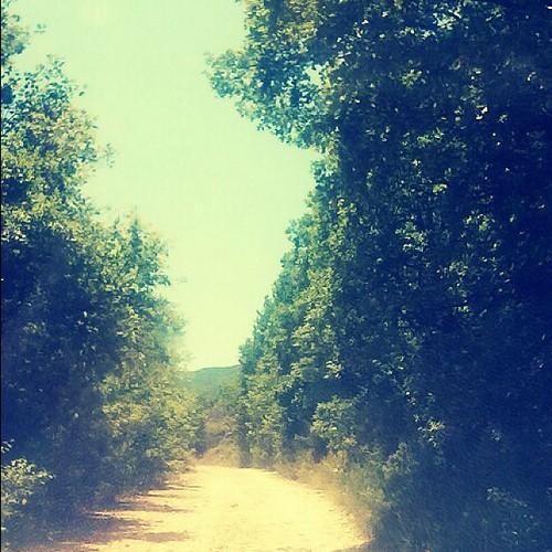 #viaggio #end #fine #finito #stradasterrata #collelongo #valledamplero