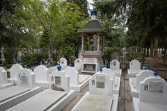 The graves of White Émigres