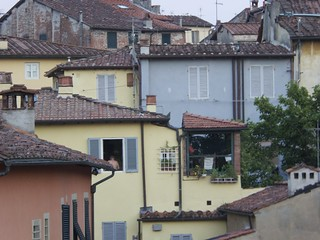 Rooftops Lucca, from the city walls