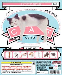 【完整官圖、販售資訊更新】PUTITTO 系列【杯緣貓】第二彈新花色登場!!