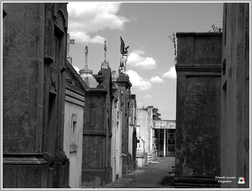 Autor: Eduardo-Lescano