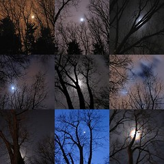winter moon mosaic