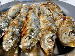 forage fish(0.0), capelin(0.0), sardine(0.0), fish(1.0), fish(1.0), seafood(1.0), produce(1.0), food(1.0), dish(1.0), shishamo(1.0), cuisine(1.0),
