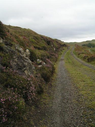 Road, Isle of Skye by Laurel Fan