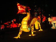 Lantern Festival 07