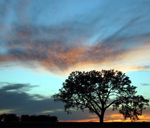 chris sunset sky southdakota midwest sd bailey plains dakotas chrisbailey bail56 randomimagesfromtheheartland chrisbaileyimages