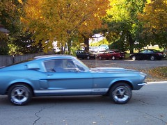first generation ford mustang(0.0), automobile(1.0), automotive exterior(1.0), wheel(1.0), vehicle(1.0), shelby mustang(1.0), land vehicle(1.0), luxury vehicle(1.0), muscle car(1.0), sports car(1.0),