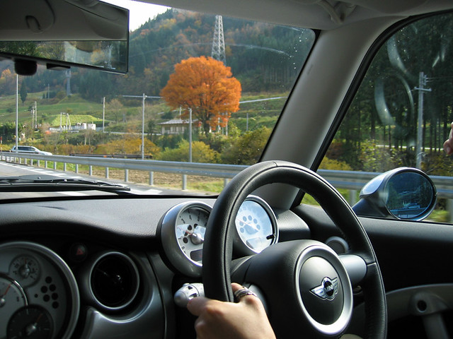 Driving MINI in Autumn