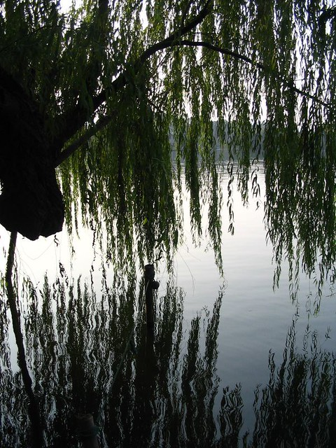 Header of A West Lake Moment