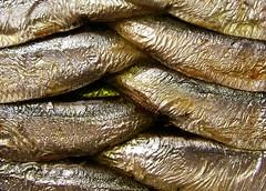 forage fish(0.0), sardine(0.0), smoked fish(1.0), fish(1.0), fish(1.0), seafood(1.0), food(1.0), close-up(1.0),