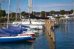 Charlottenlund's Marina